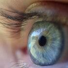 Werking en functies van het oog