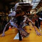 De sarcosuchus, een prehistorische reuzenkrokodil