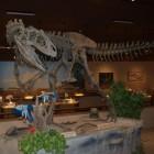 De allosaurus, een gigantische vleesetende dinosaurus