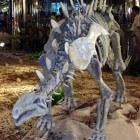 De huayangosaurus, een unieke stegosaurus uit de prehistorie