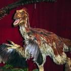 Stammen vogels af van dinosaurussen?