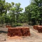 Lateriet – Rode aarde en bouwmateriaal van Angkor Wat