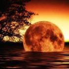 Theorie Immanuel Velikovsky: natuurrampen en crisis op aarde