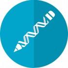 Wat is fenotype en genotype, met als voorbeeld vachtkleur