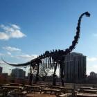 De Brachiosaurus, een enorme dinosaurus uit de prehistorie