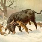 De oeros: een uitgestorven rundersoort