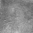 Geschiedenis van de vingerafdruk