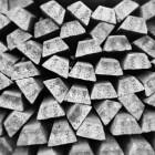 zware metalen ontgiften