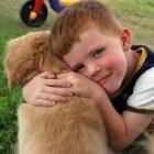 Je hond je beste vriend?