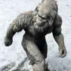 Grootvoeten op het spoor – Sasquatch (Bigfoot)
