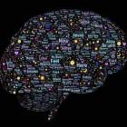 Leren en geheugen: van filosofie naar psychologie