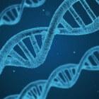 DNA en onderzoek