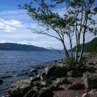 Het monster van Loch Ness – mythe of werkelijkheid?