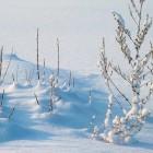 De vorming van neerslag, wanneer gaat het sneeuwen?