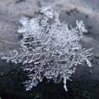 IJskristallen, sneeuwkristallen en rijp