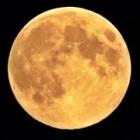 De maan en de maanfases of schijngestalten