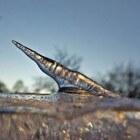 Een opwaartse ijspegel (stalagmiet) bij vriezend weer