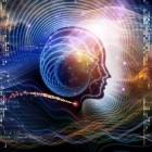 Het menselijk brein: hoe werken onze hersenen?