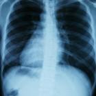 Ademhalingsstelsel, Biologie