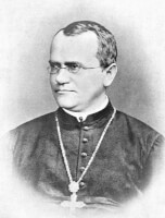 Gregor Mendel / Bron: Bateson, William, Wikimedia Commons (Publiek domein)