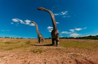 Mokele-mbembe: is de dinosaurus níet uitgestorven